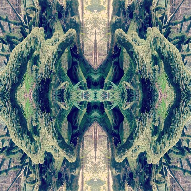 Moss monster #mirrorgram